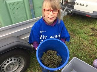 Darleen mit geernteten Weintrauben